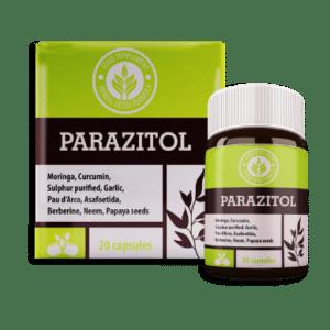 Resenhas Parazitol