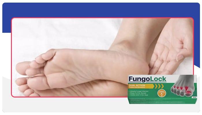 Fungolock Instruções de uso do Fungolock